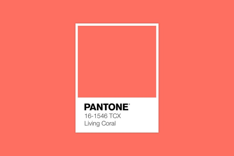 Announcing The Amazing Pantone Color Of The Year 2019!