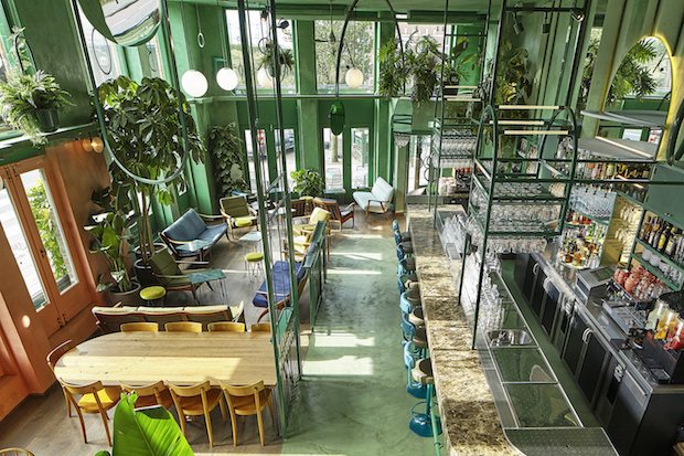 Bar Botanique Cafe Tropique_discover a rainforest-like feel_BOTANIQUE_02 bar Bar Botanique Cafe Tropique: discover a rainforest-like feel Bar Botanique Cafe Tropique discover a rainforest like feel BOTANIQUE 02
