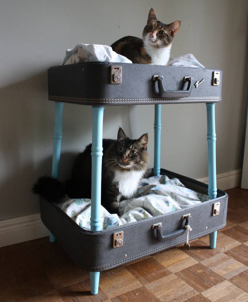 House for a cat: let the pet also have its own personal space house for a cat House for a cat: let the pet also have its own personal space House for a cat let the pet also have its own personal space 1