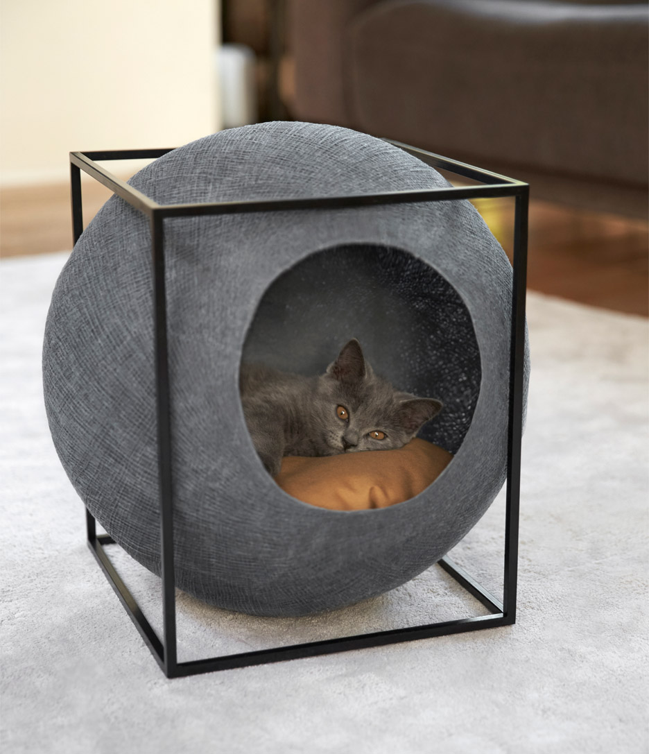 house for a cat House for a cat: let the pet also have its own personal space House for a cat let the pet also have its own personal space 3