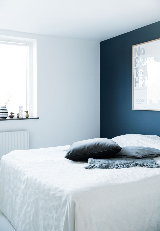 "blue color in interior Blue color in interior: 5 arguments ""for"" sininen 1"