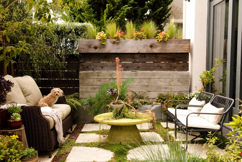 Mid-Century Design for Small Outdoor Spaces'_8 mid-century design Mid-Century Design for Small Outdoor Spaces' The Illusion of Small Areas for Outdoor Spaces    8