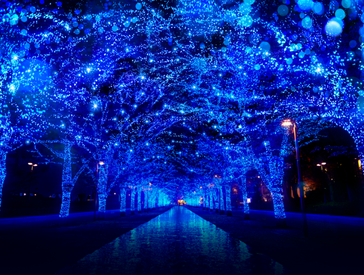 Warm Yourself Up With These Christmas Lights Around The World