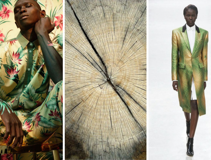 green forest Moodboards Trends 2019: Green Forest In Fashion Design sem nome 2 740x560
