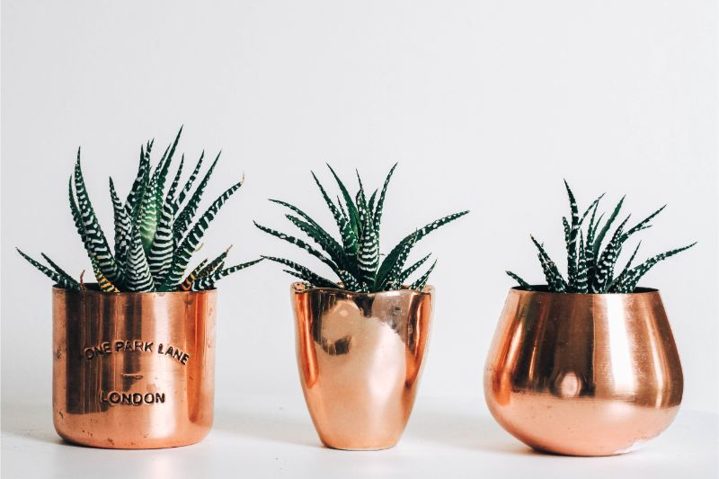 3 Details You Must Be Able to Pinpoint In Mid-Century Furniture_1 mid-century furniture 3 Details You Must Be Able to Pinpoint In Mid-Century Furniture kara eads gVUV7PbSu 0 unsplash 1